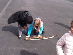 outdoor learning 017